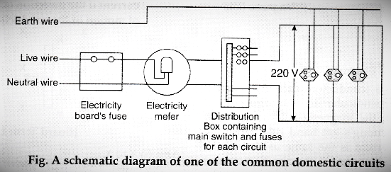 A Draw Schematic Labelled Diagram Of, Domestic Wiring Diagram Class 10