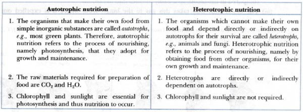 What Is The Difference Between Autotrophic Nutrition And Heterotrophic Nutrition Sarthaks Econnect Largest Online Education Community