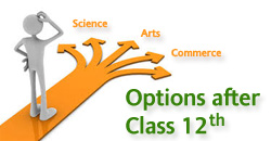 Career options after class 12th