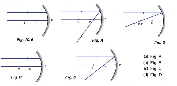 Which Of The Following Ray Diagrams Is Correct For The Ray Of Light