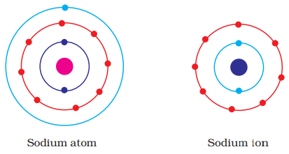 Show diagramatically the electron distributions in a sodium atom and since the atomic number of sodium atom is 11 it has 11 electrons a positively charged sodium ion na is formed by the removal of one electron from a ccuart Gallery